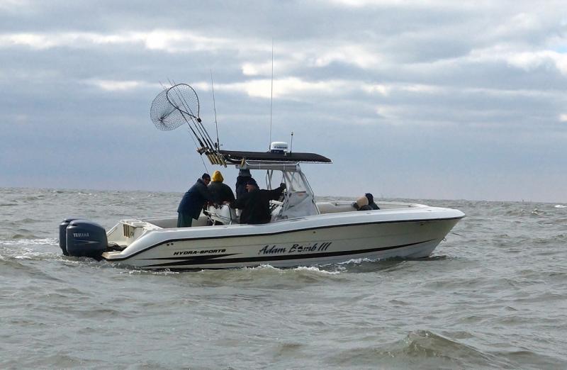 Adam bomb sport fishing the boat for Adam bomb fishing
